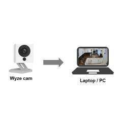 Wyze Can en una computadora