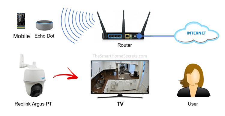 Diagrama de la cámara Reolink con Alexa Echo Dor e Reolink