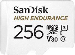Sandisk High Endurance 256GB